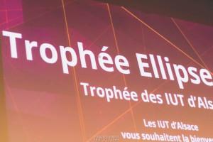 ellipse_50